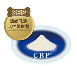 CBP-濃縮乳清 活性蛋白質