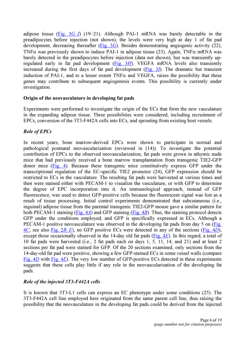 脂肪組織と血管新生の関係 P6